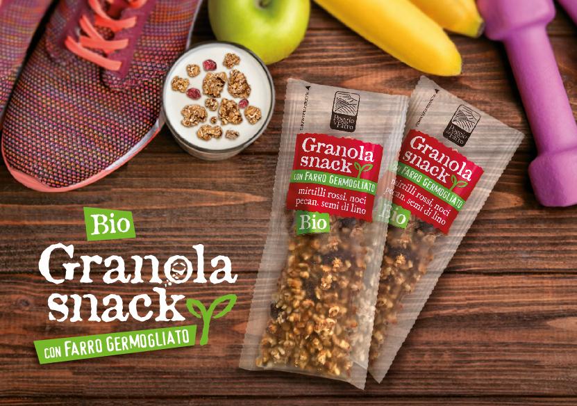 granola_snack
