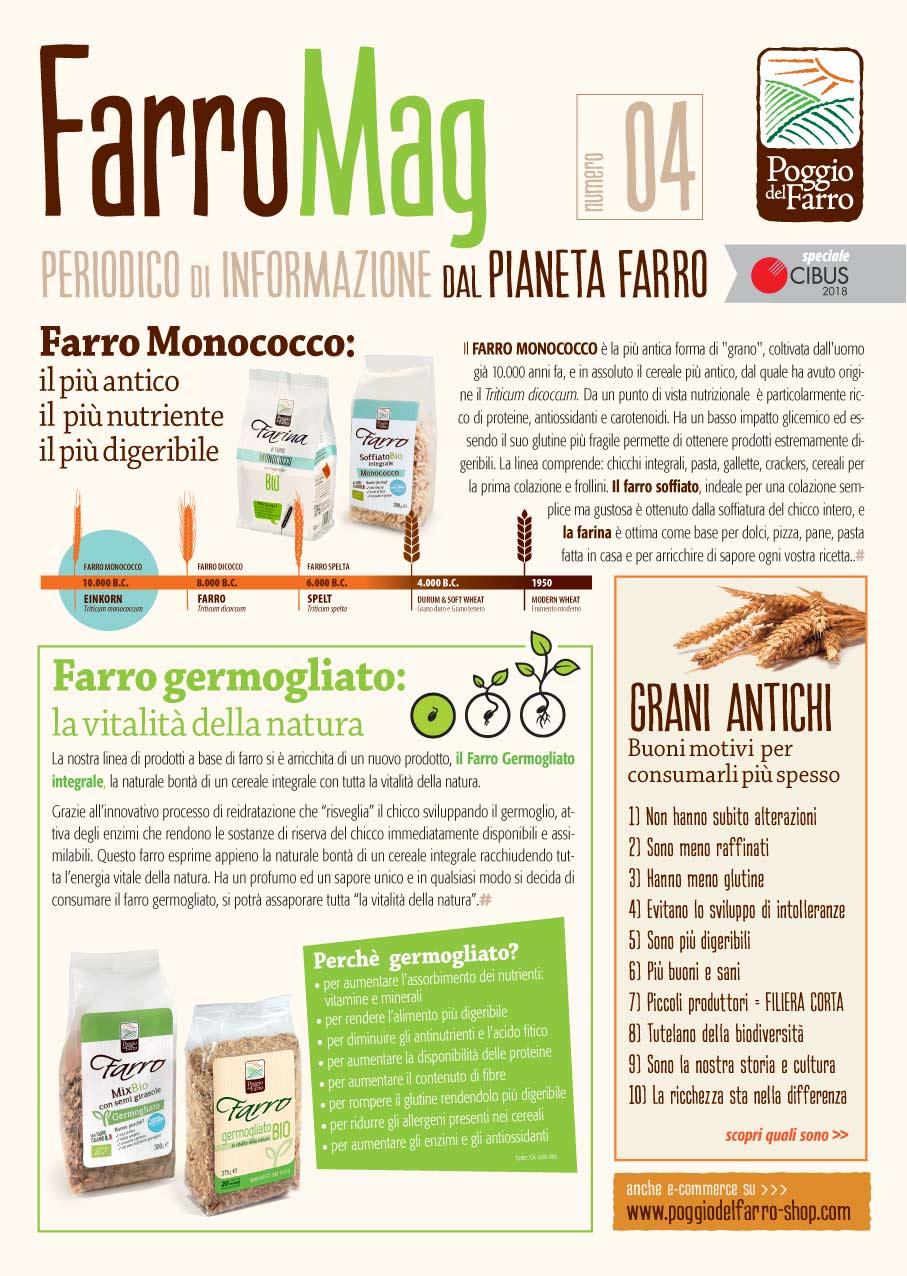 FarroMag 04